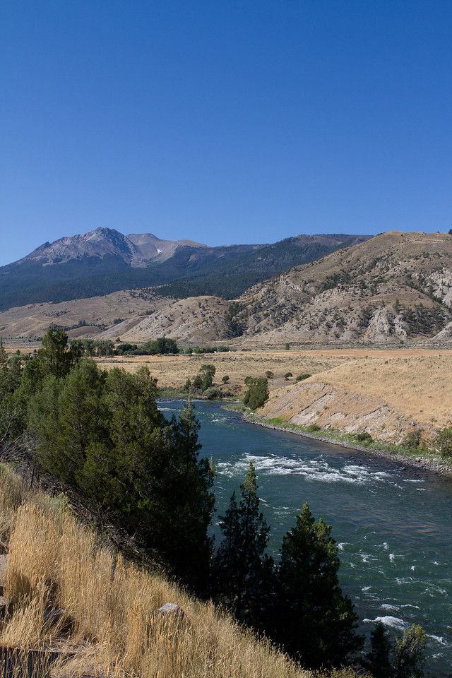 Yellowstone-1394