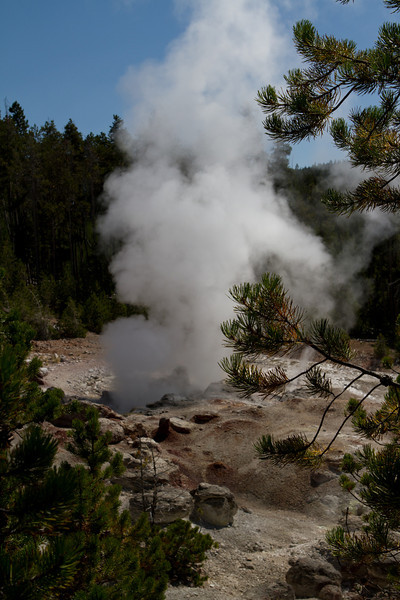 Yellowstone-1433