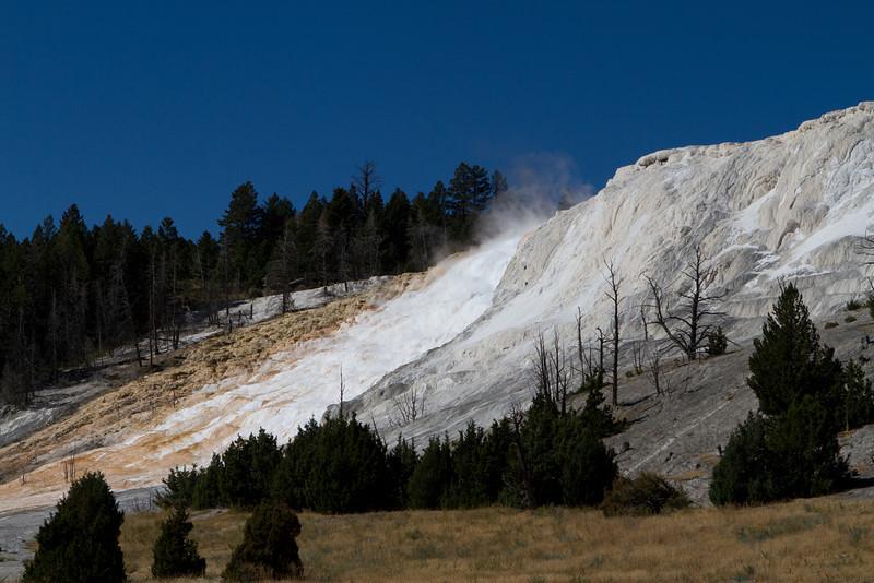 Yellowstone-1424