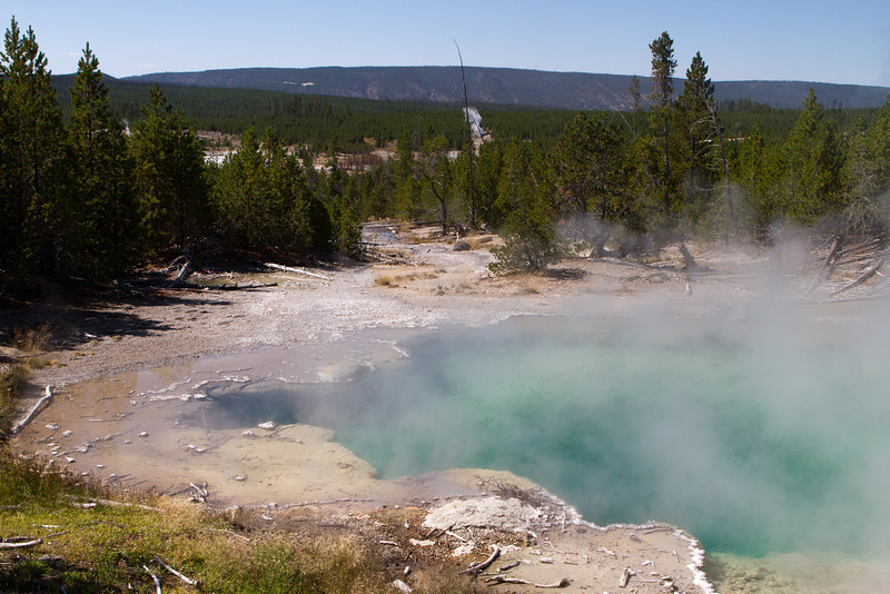Yellowstone-1430
