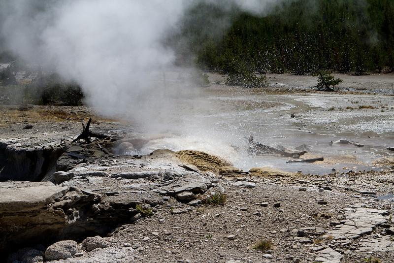 Yellowstone-1550