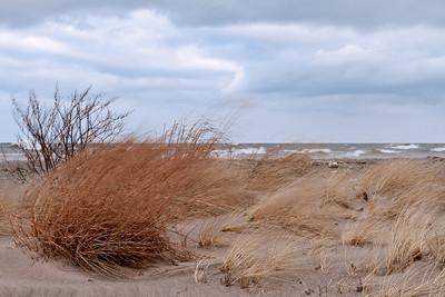Wind Swept Dunes