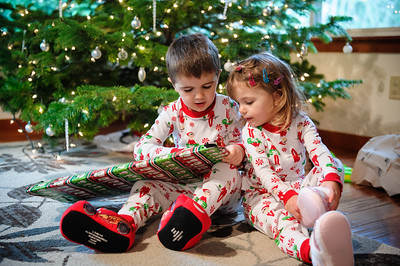 2015 Christmas-11