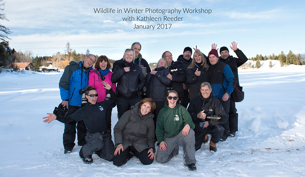 Wildlife in Winter Workshop Jan 20-23, 2017