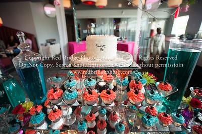 Michala & Cierra's Sweet 16 Party : Raleigh, NC
