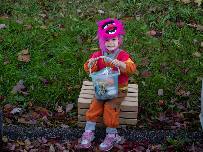 Trunk or Treat 2019-32