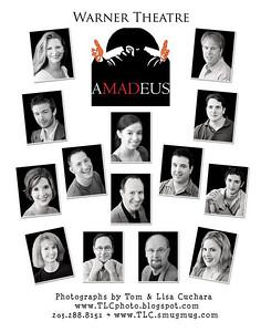 Warner Theatre Amadeus Collage
