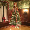 THE STIFEL CHRISTMAS TREE IN THE DINING ROOM