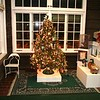 The completed tree ready for the raffle drawing.