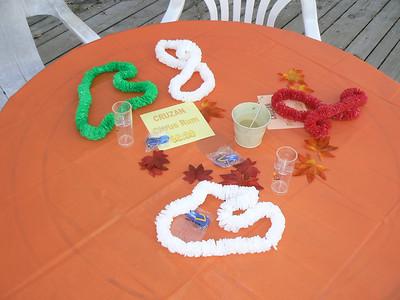 20080920 Deck Party - BGSC 051