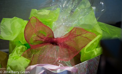 20140302_brittany_high_tea_0320