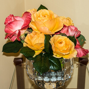 Roses from the garden