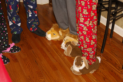 More great slippers!  Lions, bunnies, polka dots, where does everyone find these 'fun' slippers?!