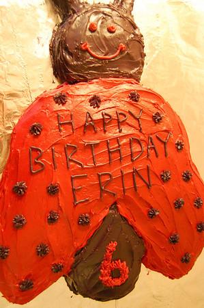Erin's 6th Birthday Party