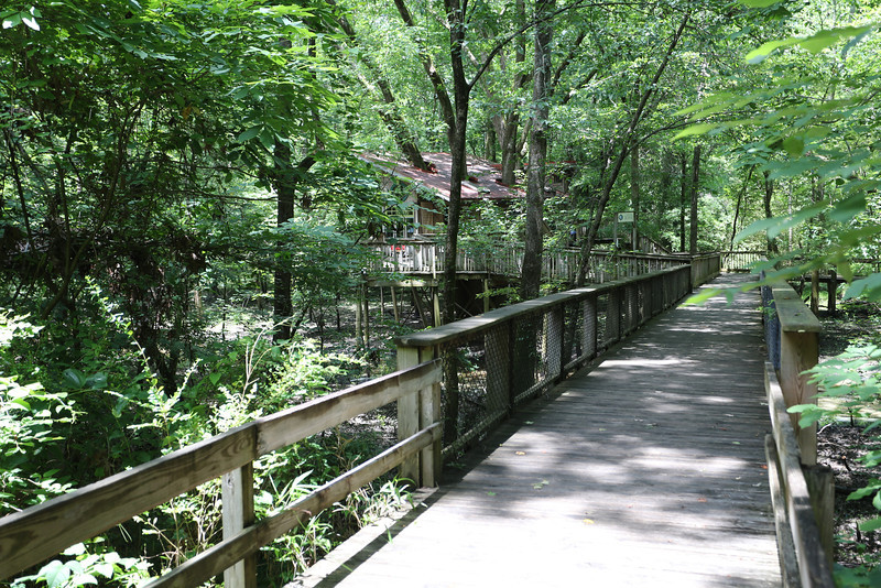 In the middle of the Nature Center surroundings ,The Tree House.