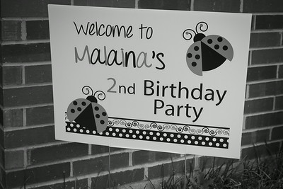 Malaina's 2nd birthday