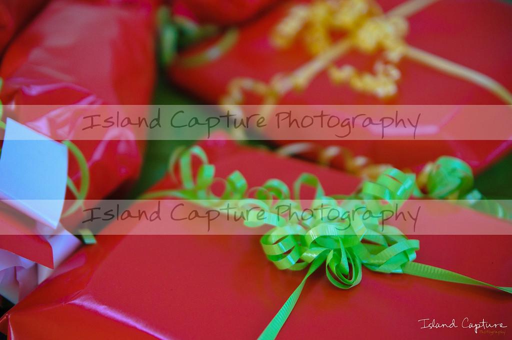 IslandCapture01_20101107_8790