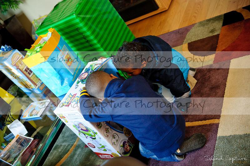 IslandCapture01_20101107_8854