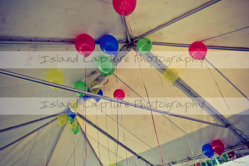 IslandCapture01_20101107_8780