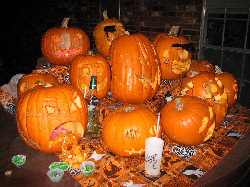 What happens when you let your pumpkins drink