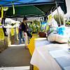 Alex's Lemonade Stand-9