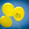 Alex's Lemonade Stand-16