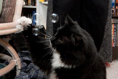 Heisenberg chasing bubbles.