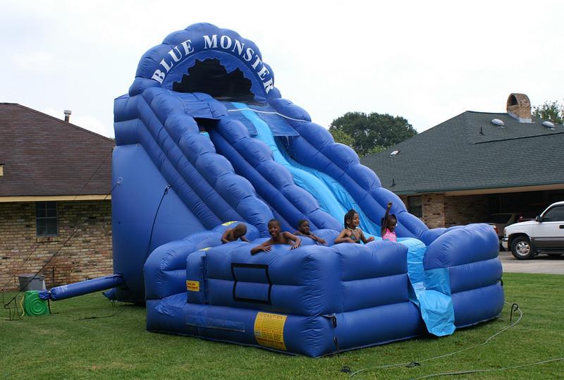 Monet's Birthday Party