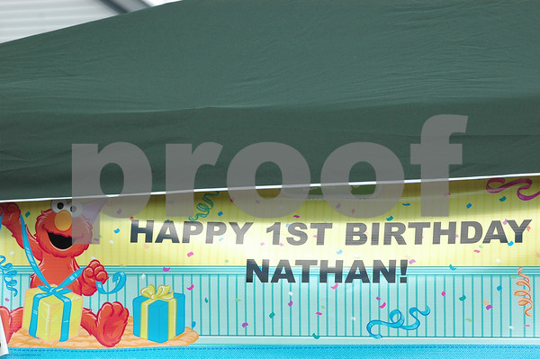 Nathan's 1st Birthday