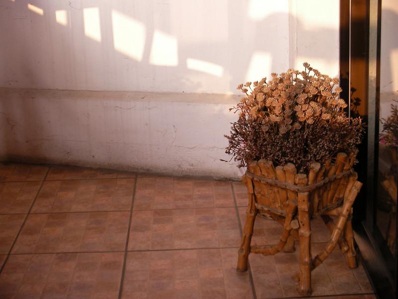 SANY0005 <br /> Photo of Cafe