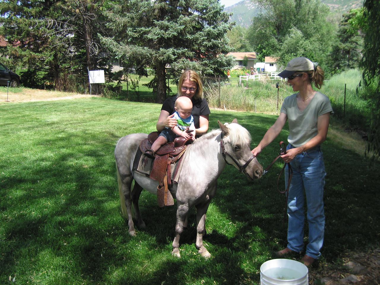 Jack on the pony