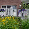 Mardi Gras- Custom Painted Mask Decorations on foamboard.<br /> Tent Party in Madison