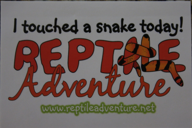 We hosted a reptile party that included snakes, frogs, geckos, lizards and more!