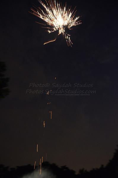 _GMS8580_©2012 Saydah Studios