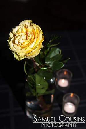 A rose in a vase at Space Gallery's New Year's Eve Party