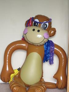 The Monkey!!