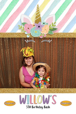 Willow's 5th Birthday Party
