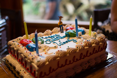 Woody's Birthday