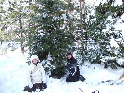 X-mas Tree Hunting - Dec '06