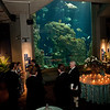 South Carolina Aquarium Stewardship Awards Gala