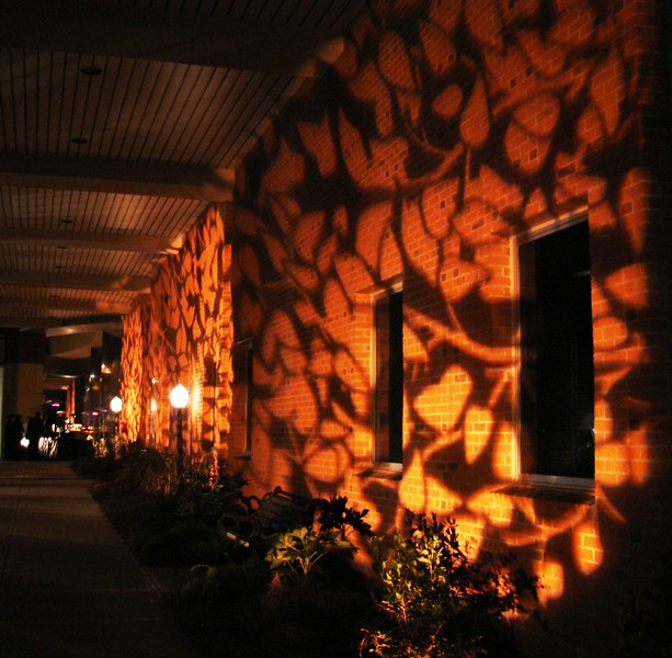 To soften the edges of a modern and industrial style building, we thought it important to add whimsical lighting in the way of leaf patterns with GOBOs, as well as traditional park benches, street lights and landscaping foliage.
