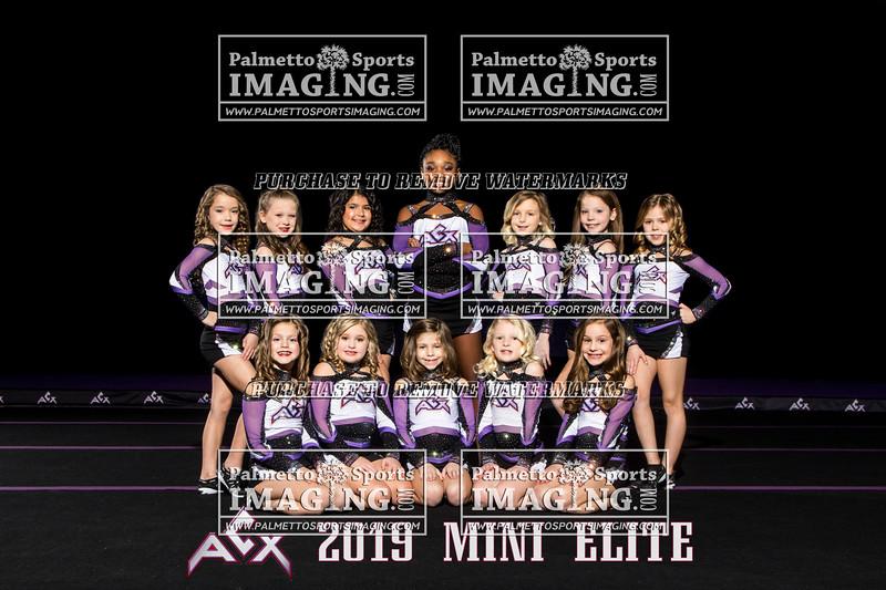 ACX Team Mini Elite text