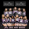 ACX Team Mini Queens text