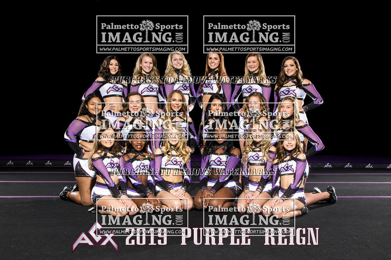 ACX Team Purple Reign text