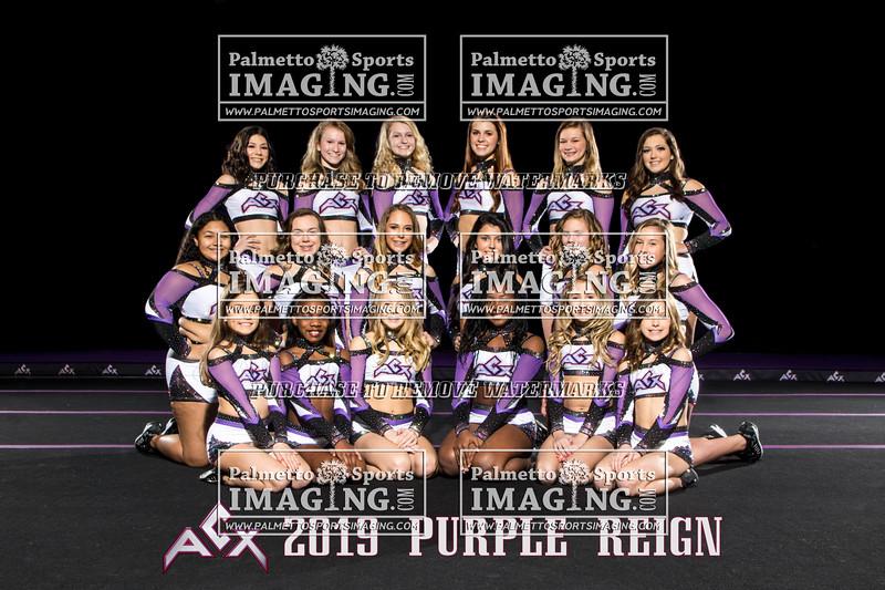 ACX Team Purple Reign text