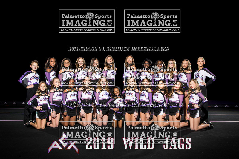 ACX Team Wild Jags text