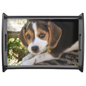 Beagle Dog Tray