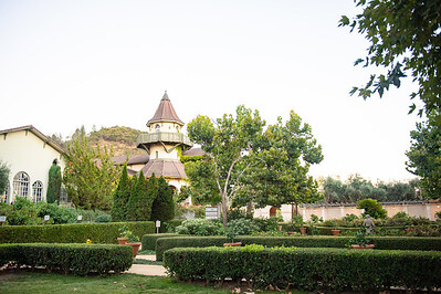 Chateau St. Jean Cinqe Cepage Launch 2018