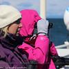Birding the Straits of Magellan