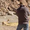 Photographing wildlife near San Pedro de Atacama, Antofagasta, Chile